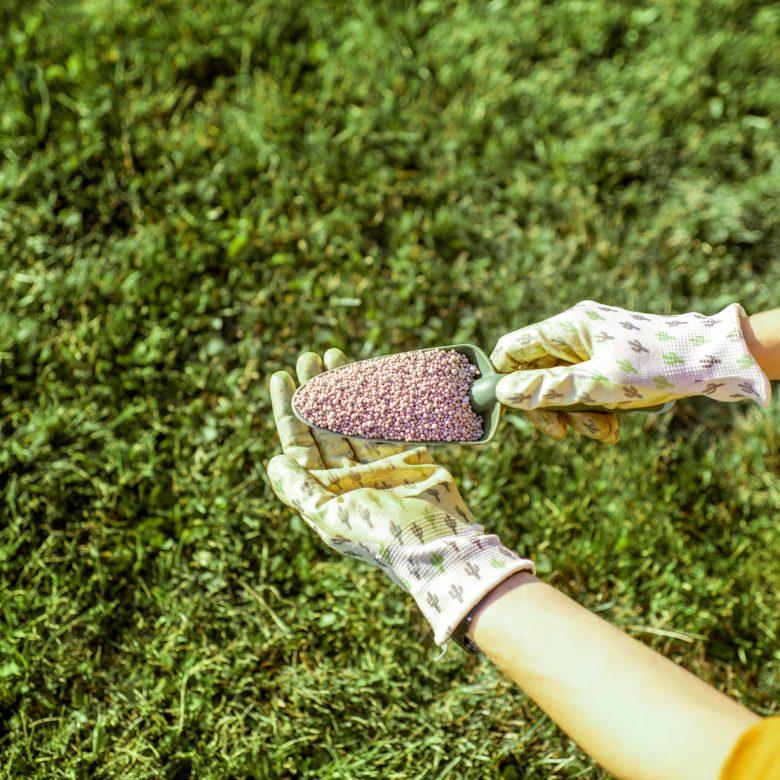 ertilizer-for-grass-growth